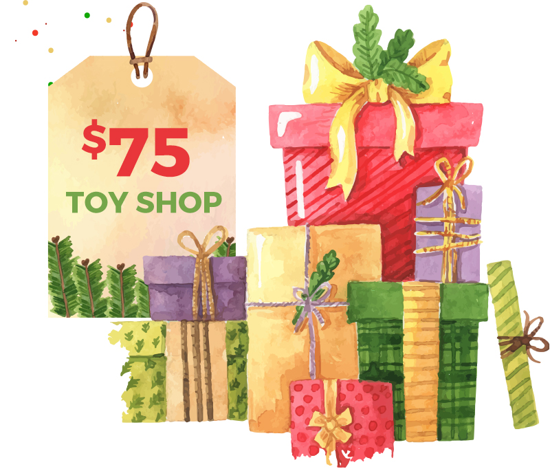 Share Toy Shop - 75