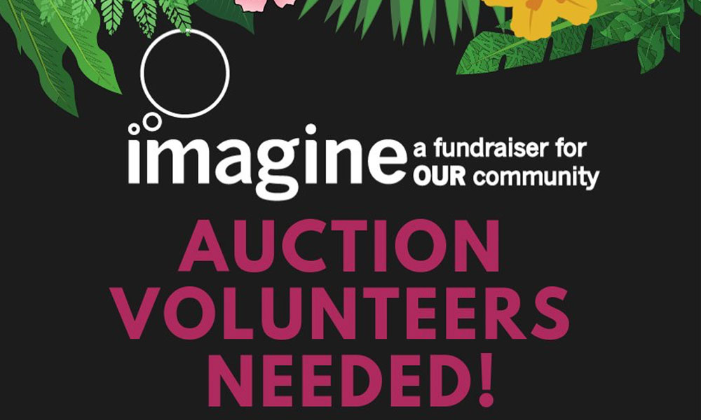 IMAGINE 2019 – Volunteer Opportunities!
